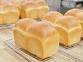 国産小麦でのパンづくり
